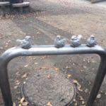 今日は自転車で。。【西河原公園】噴水があるんですね!